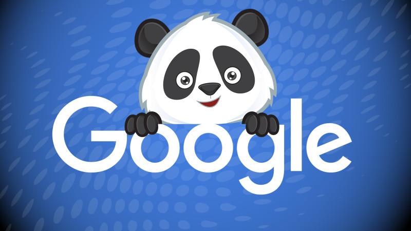 google-panda-name3-ss-1920-800x450